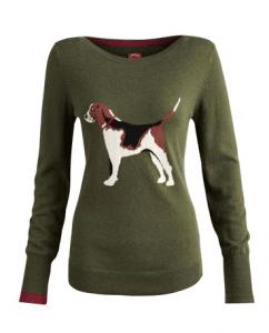 Beagle Jumper