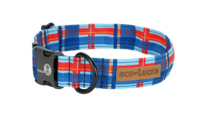 Dublin Dog Hamptons Harbour Collar