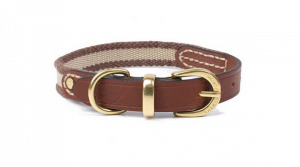 Waifs and Strays Leather and Webbing Dog Collar