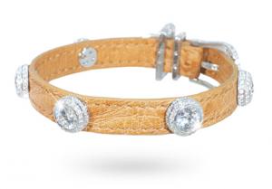 I Love Dogs Diamonds 'L'Étoile'