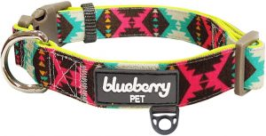 Blueberry pet neoprene dog collar