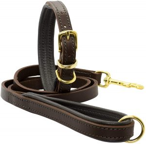 Dogs and Horses Big Dog Collar