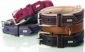 Hunter soft canadian elk leather dog collar