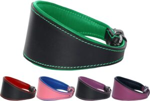 Ace Dog Collars Traditional Leather Dog Collar